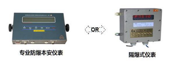化工厂超低双层不锈钢防爆地磅 仪表选配